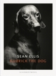 Cover: Ellis, Sean: Kubrick The Dog